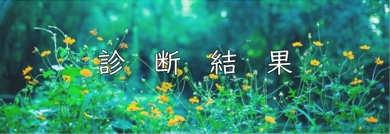森の中の黄色い花